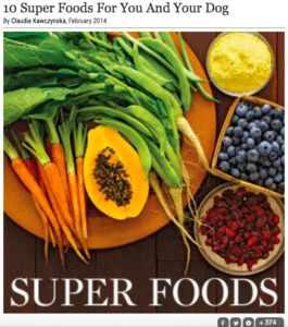 superfood for dogs inutoyoya