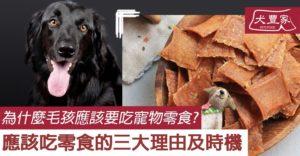 為什麼毛孩應該要吃寵物零食_犬豐家