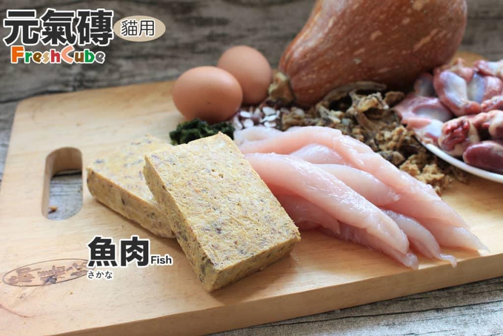 寵物鮮食元氣磚貓_魚肉_1