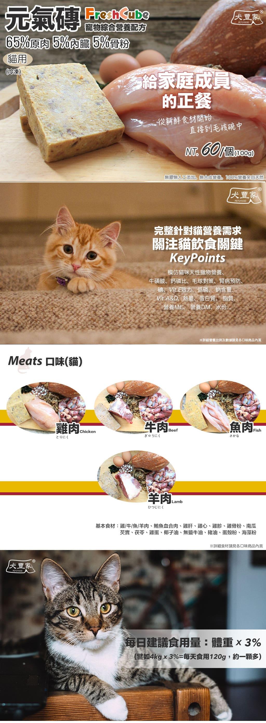 寵物鮮食貓用元氣磚大檔_01