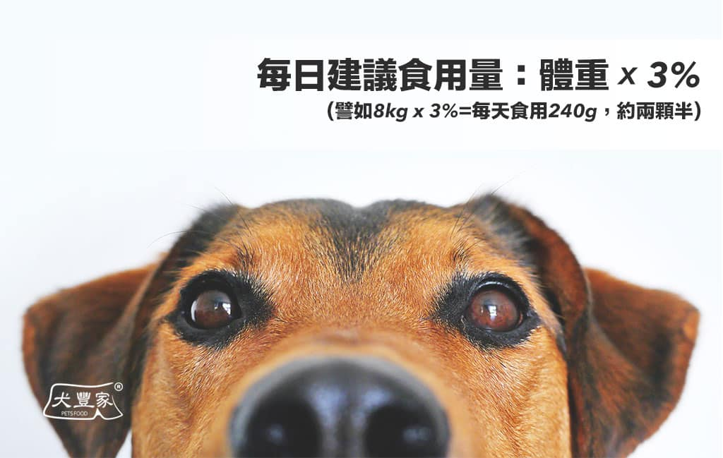 寵物鮮食元氣磚狗狗_04